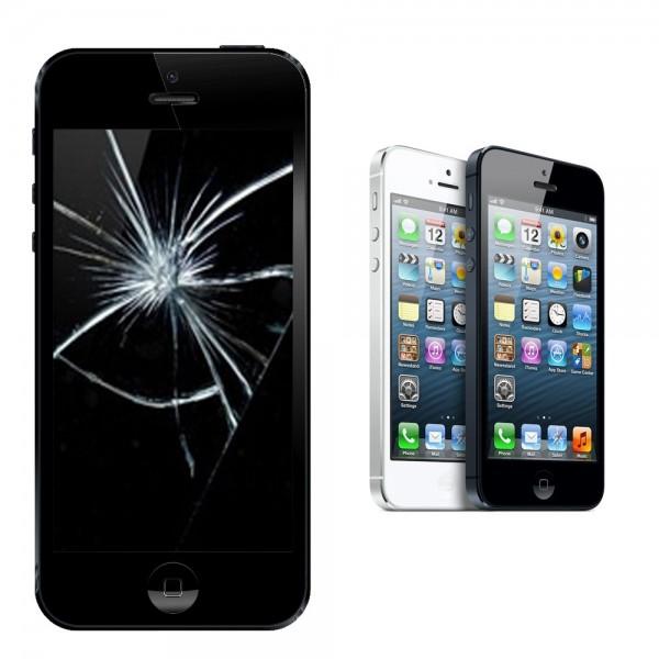 Apple iPhone 5 Display Glasscheibe Reparatur